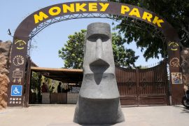 Entrada al Monkey Park
