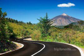El Teide visto del norte