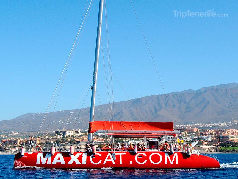 Barco Maxicat