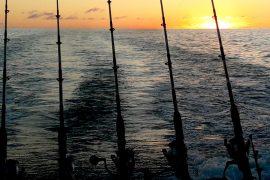 No Limit - Pesca en Tenerife