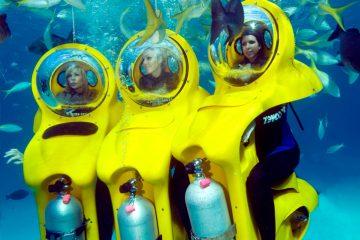 Bob Diving con 3 chicas